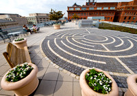 American Psychological Association Green Roof and Labyrinth by Len Spoden 0007